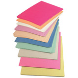 The Consortium A2 Medium weight Sugar Paper - Assorted Colour Pack