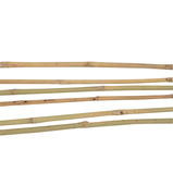 BAMBOO CANES 1.2M PK20