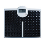 813 ELECTRONIC SCALES