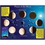 Phases of the Moon Poster