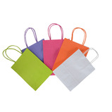 COLOURED PAPER CARRIER BAGS X 36