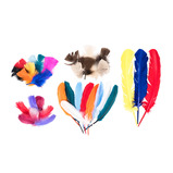 Craft Feathers Classpack