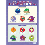 COMPONENTS OF PHYS FITNESS POSTERS