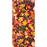 Autumn Leaves Display Fabric