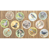 GARDEN BIRDS BOARD SET