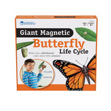 MAGNETIC BUTTERFLY LIFE CYCLE