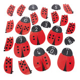 Giant Ladybird Number Bonds