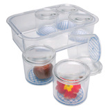 BUG POT SET MAGNIFYING LIDS